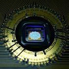 photo of quantum photonic chip